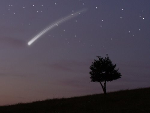 [Image: star13-710895.jpg]